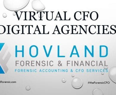 Virtual CFO services - Digital agencies