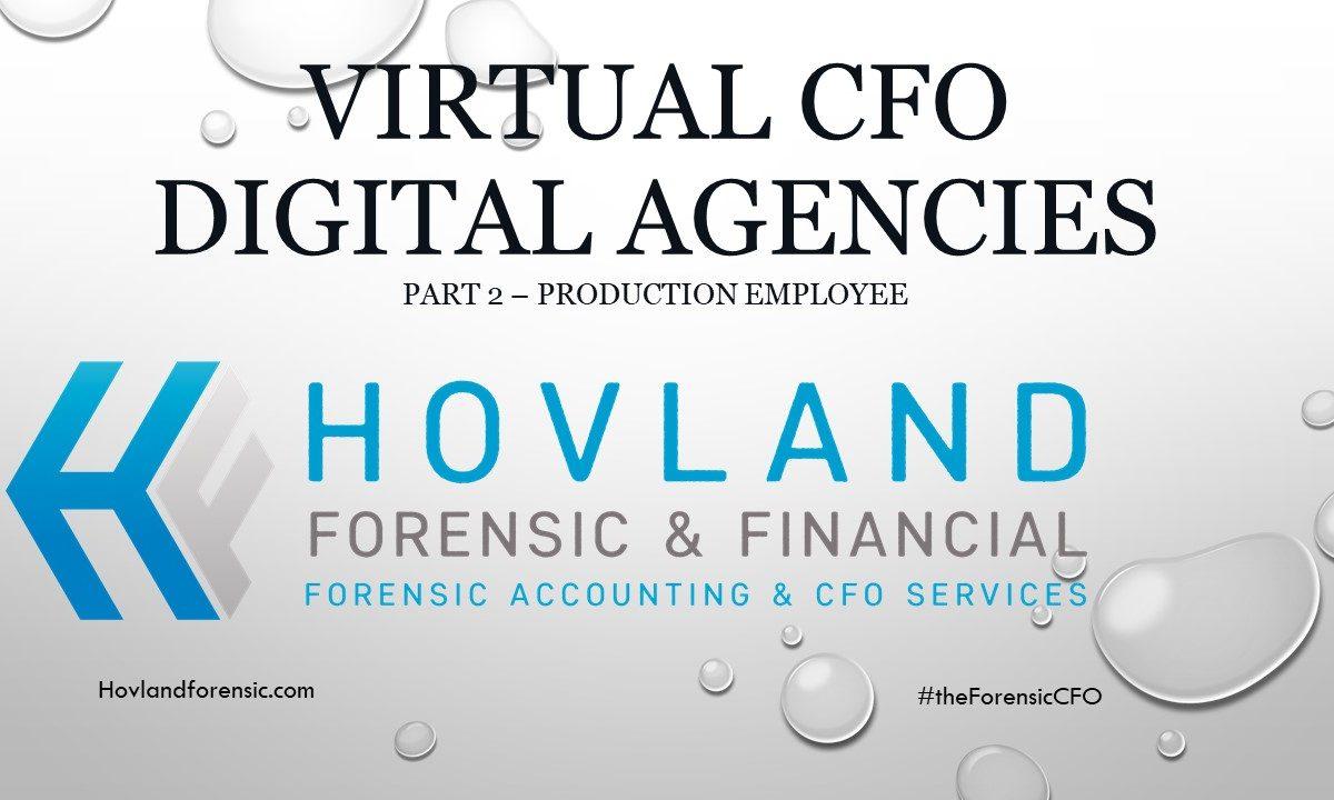 virtual cfo services digital agencies