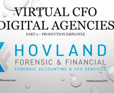virtual cfo services digital agencies